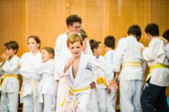 Judo_Otroci_2017_2018_040